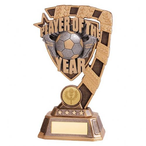 Euphoria Player of The Year Award 180mm